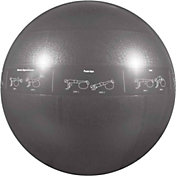 GoFit 75 cm Professional Stability Ball with DVD