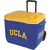 Coleman UCLA Bruins 60qt. Roll Cooler